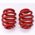 BDR Springs rear